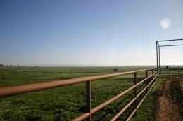 4-landscape